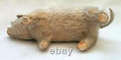 Tres ancien cochon papier mache fourrure BOITE A BONBON 24cm